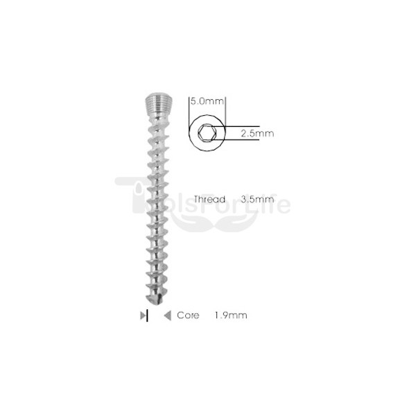 Cancellous Safety Lock (LCP) Screw 3.5mm Self Tapping